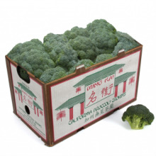 Short Cut Crown Broccoli